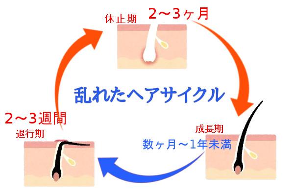 女性用育毛剤の効果は3ヶ月から6ヶ月の期間が必要2