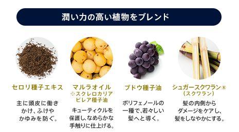 4種類の植物性オイル