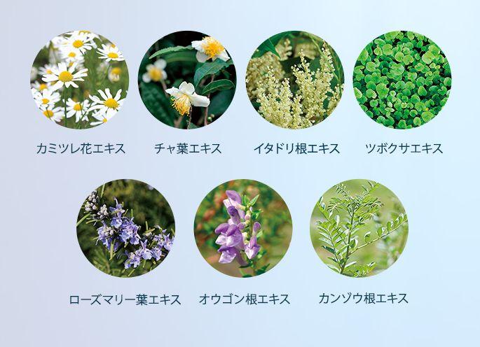 7種類のハーブエキス