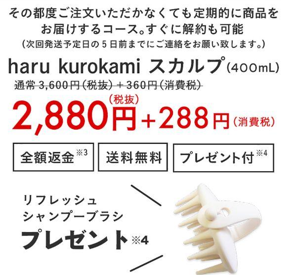 定期コース【20%オフ+返金保証+プレゼント付】