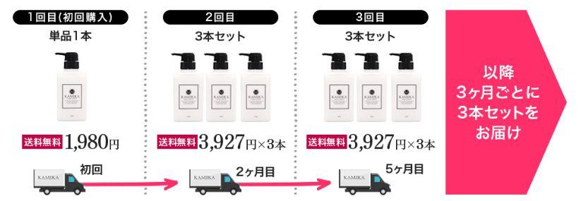 【最安値】カミカシャンプーは初回限定割引キャンペーン実施中・2回目以降11,780円【1本あたり3,927円】